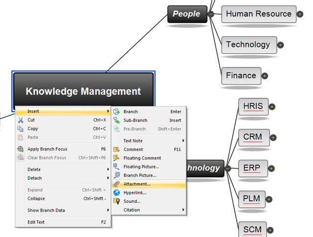 Knowledge management software mindview 1 software mind mapping for knowledge managemnt toneelgroepblik Gallery