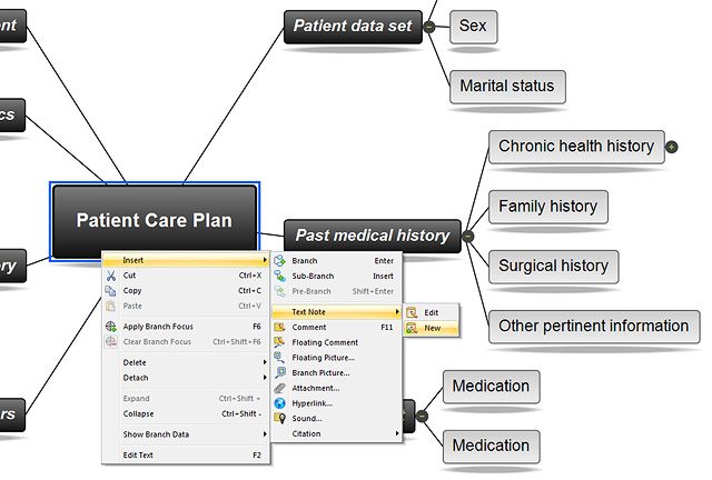 Nursing Concept Map Template http://www.matchware.com/en/special/concept-mapping-software-for-nursing.php