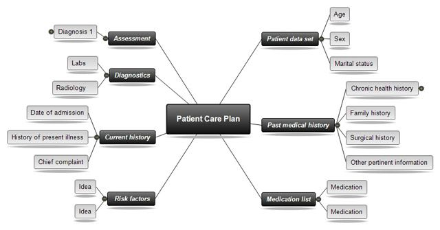 Patient Care Plan Concept Map For Nursing Template