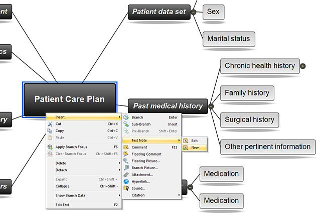 Patient Care Plan Concept Map
