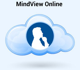 Buy Mindview Online Version